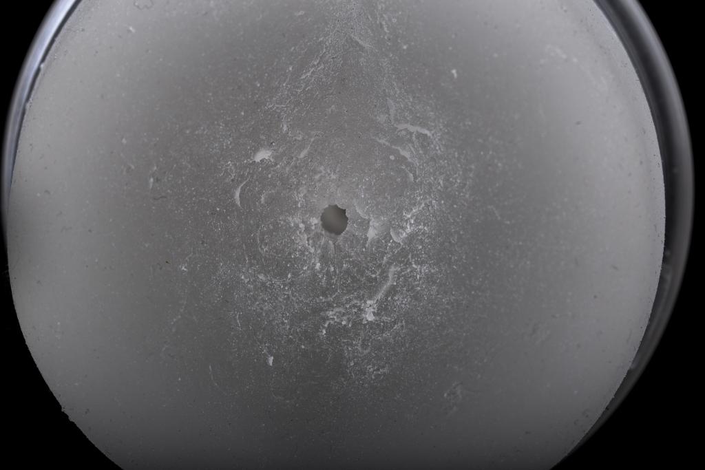 Ice Crystal Anus 8